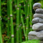 Ładny oraz ładny ogród to zasługa wielu godzin spędzonych  w jego zaciszu podczas pielegnacji.